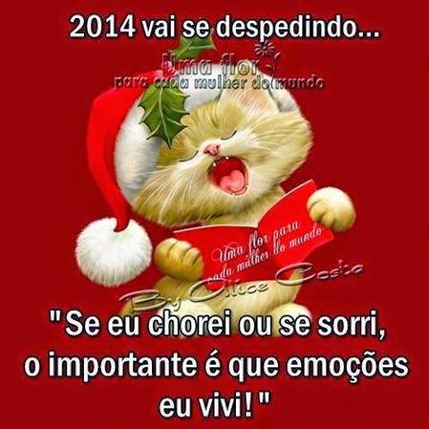 ANO DE 2014...