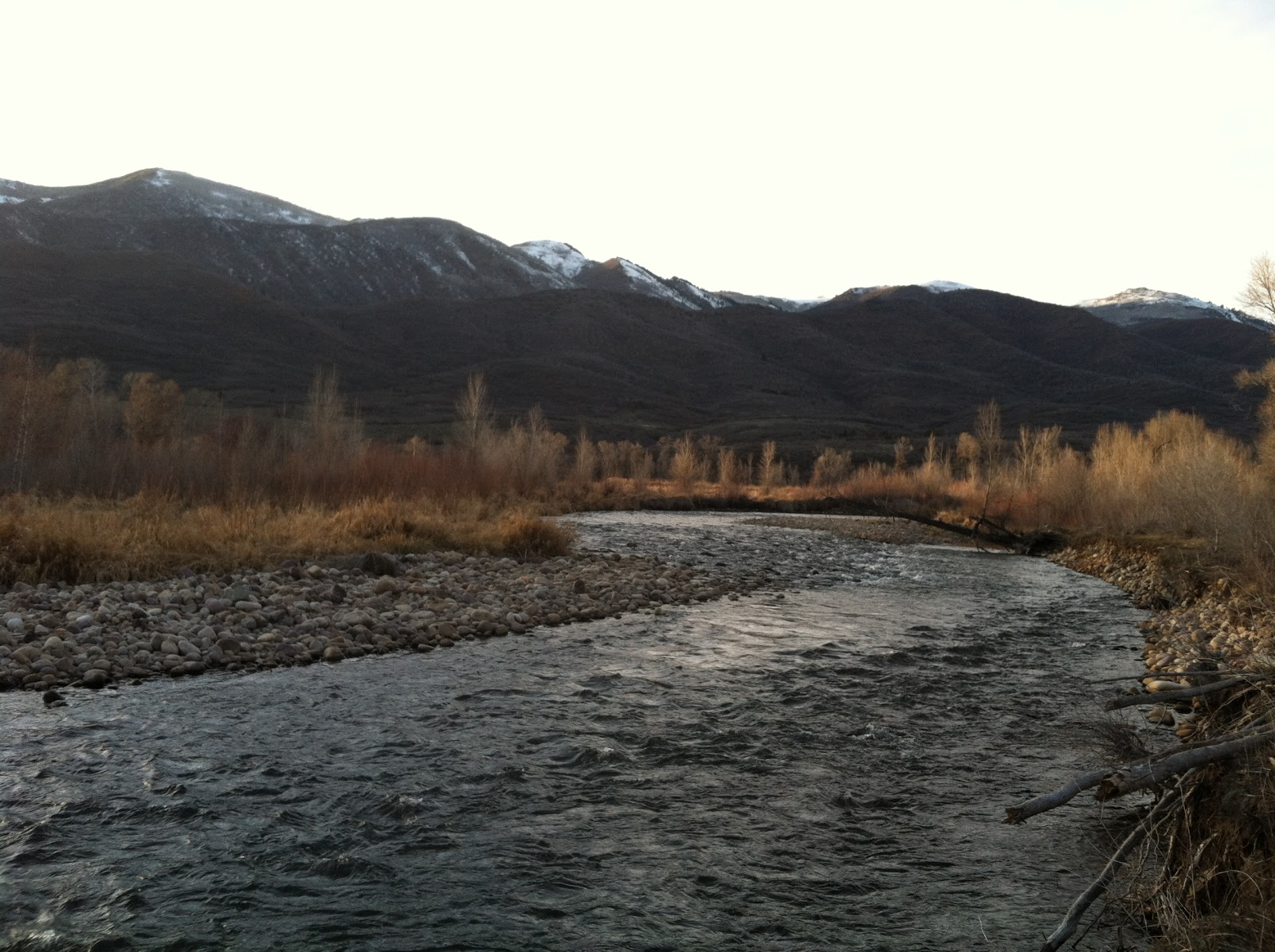 Provo river fly guy year round fishing blog november 26 for Provo river fishing report