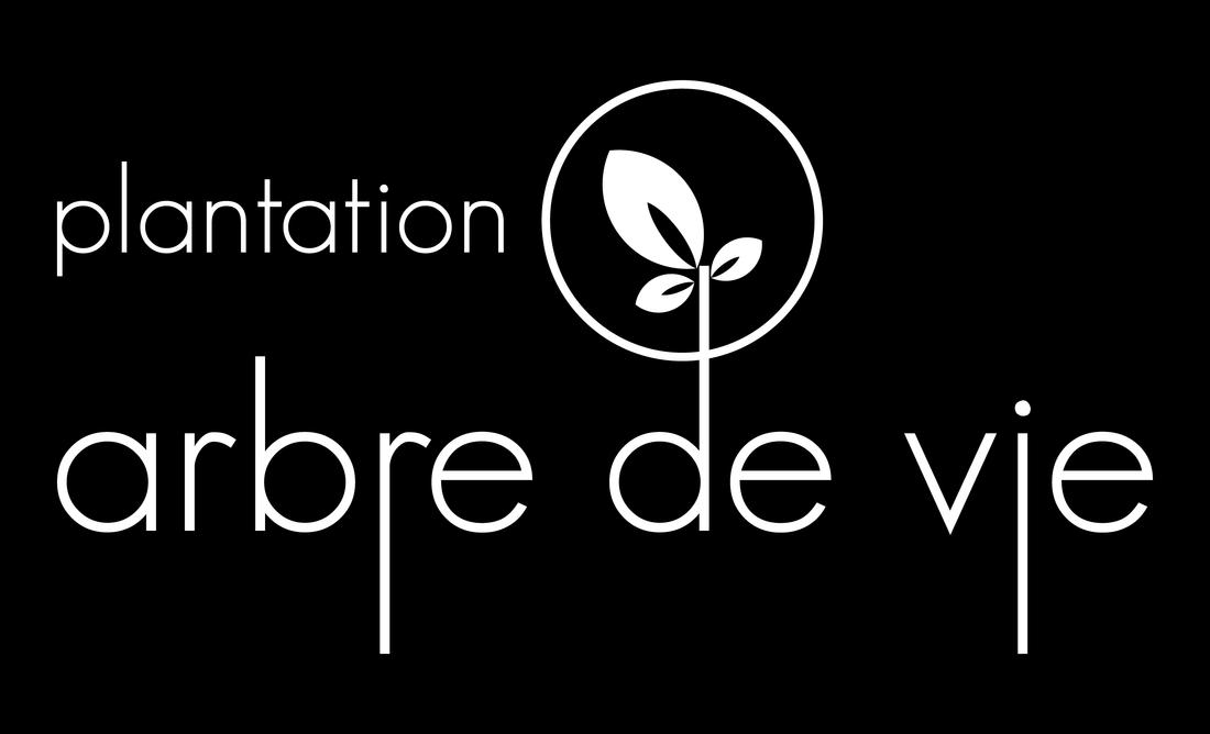 PLANTATION ARBRE DE VIE