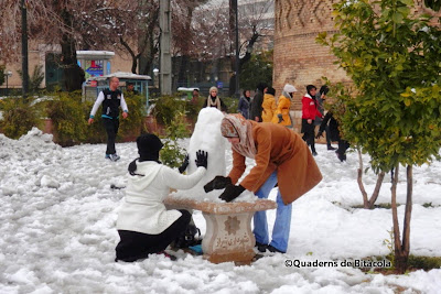 nieve Shiraz