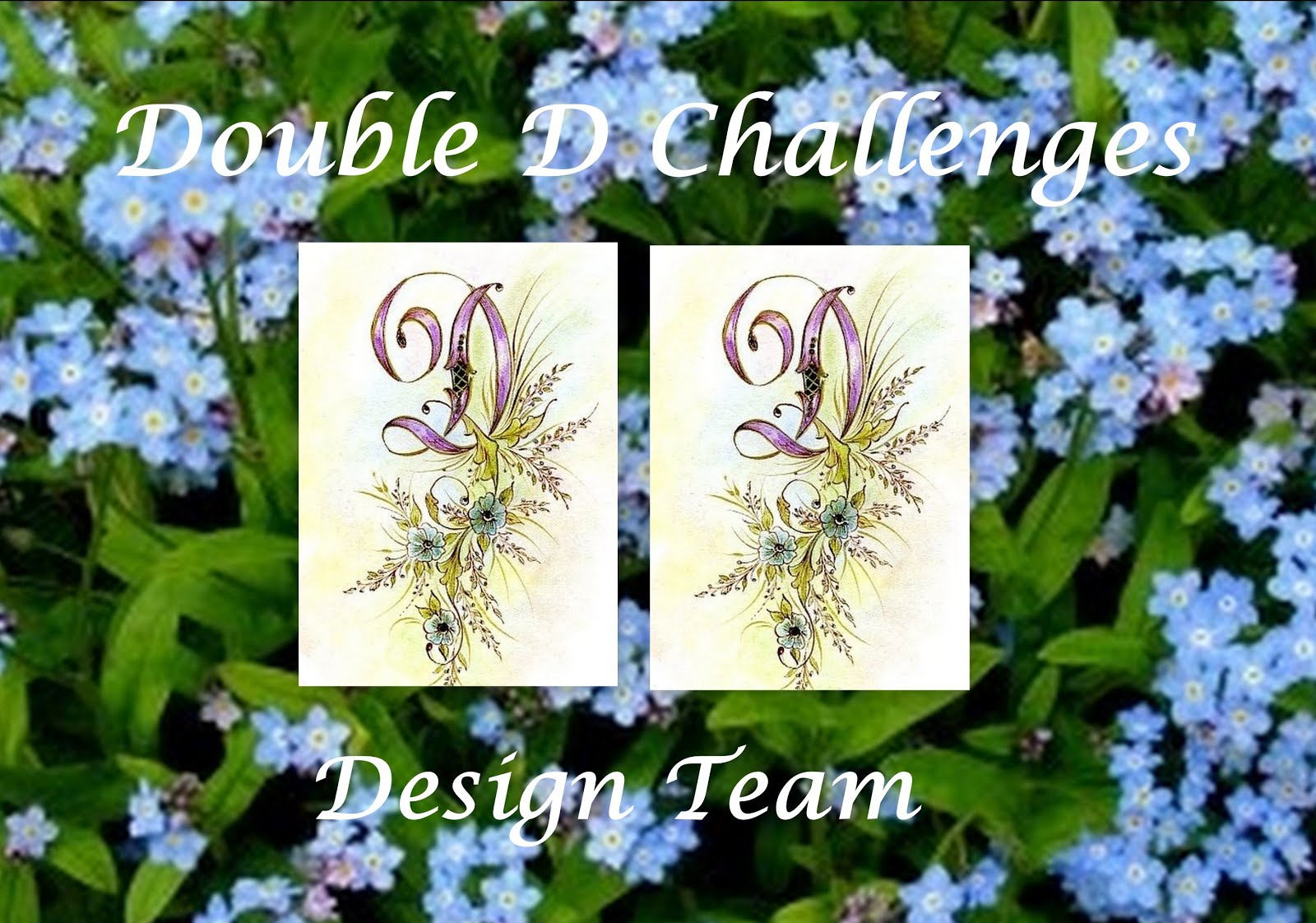 Double D Design Team