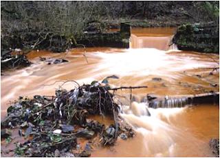 Gejala hidrosfer salah satunya yaitu adanya sungai. (Sumber : Microsoft Encarta)