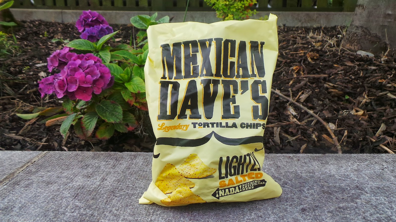 degustabox chips