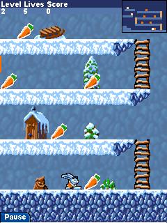 carrot mania on ice