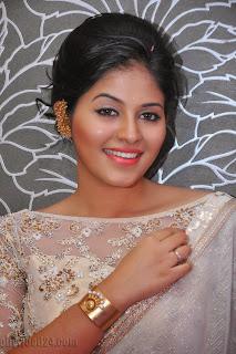Anjali latest Glamorous pics in saree 012
