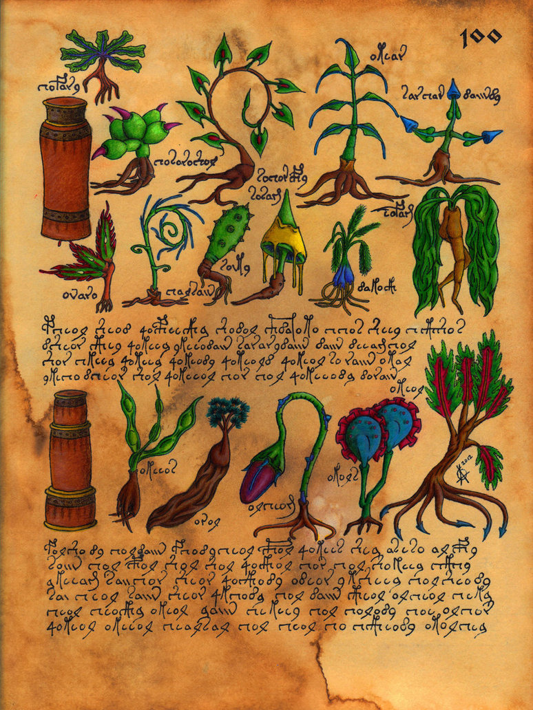 Manuscrito Voynich (Botanica)