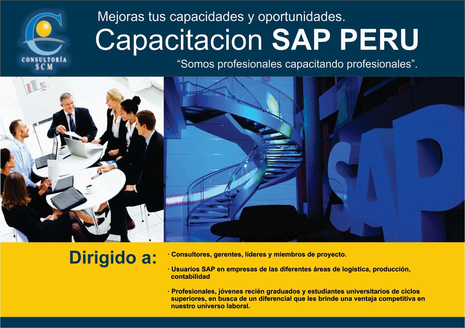 Breve explicacion del SAP