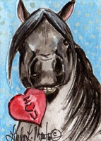 http://www.zazzle.com/valentine_pony_postcard_black-239048410297260482