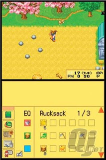 Free Download Game Harvest Moon DS ISO For PC Full Version ZGASPC