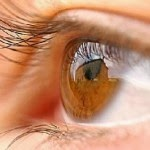 Functions and Food Sources Rich in Lutein - Tips to Maintain Healthy Eyes