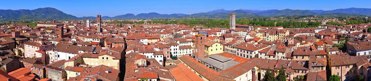 Lucca, Italy, from high atop the Guinigi Tower