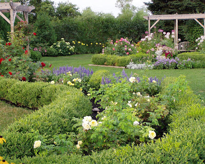 disenos-variados-jardin-flores-rosas
