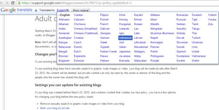 Cara Megaktifkan Auto Translate Pada Google Chrome 5