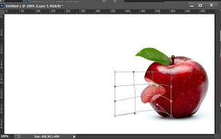 Manipulasi Photoshop Profesional cara Membuat Foto menyeramkan dengan Photoshop cs3