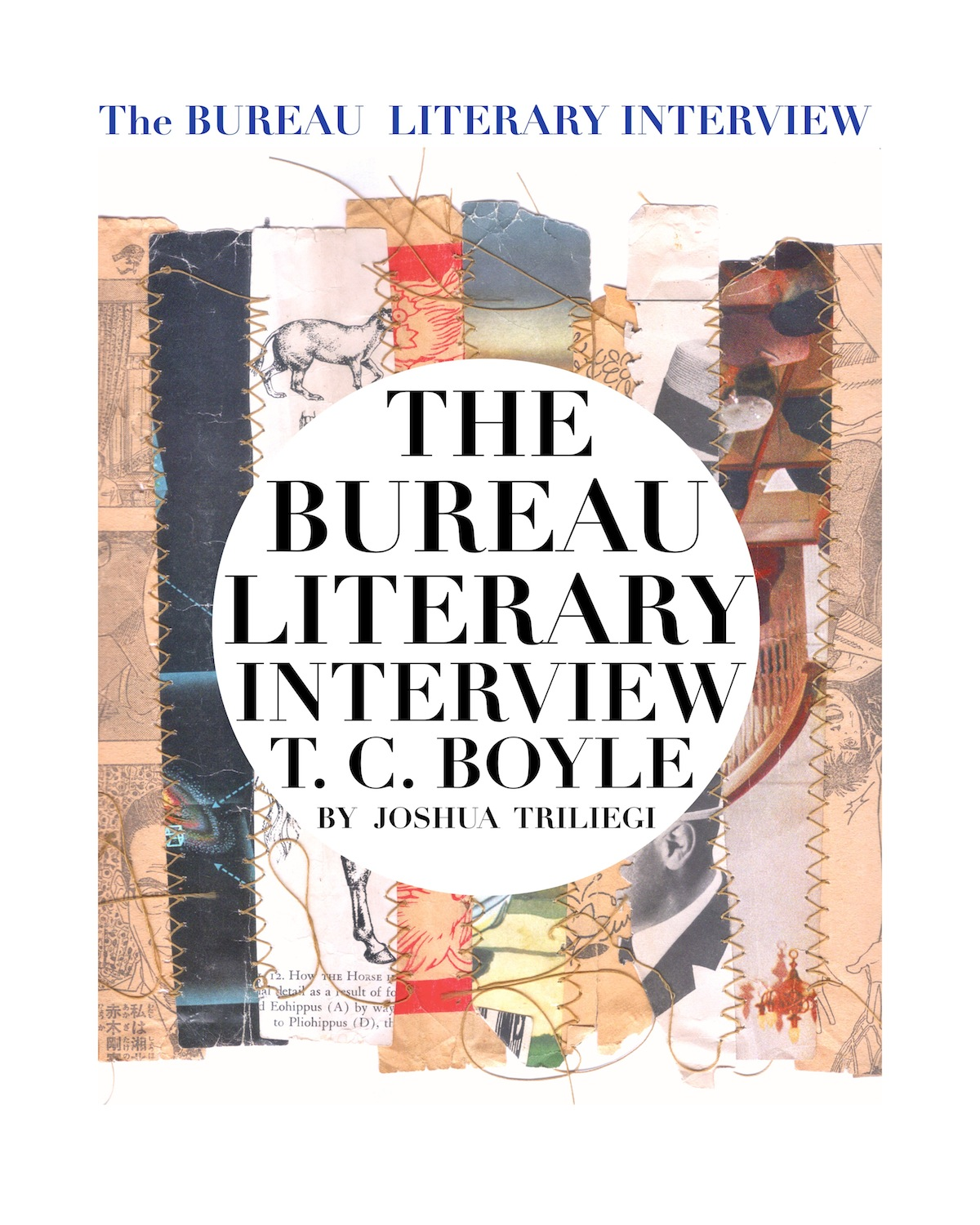 T.C. BOYLE : The NOVELIST