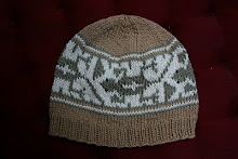 Eco Gecko Baby Hat