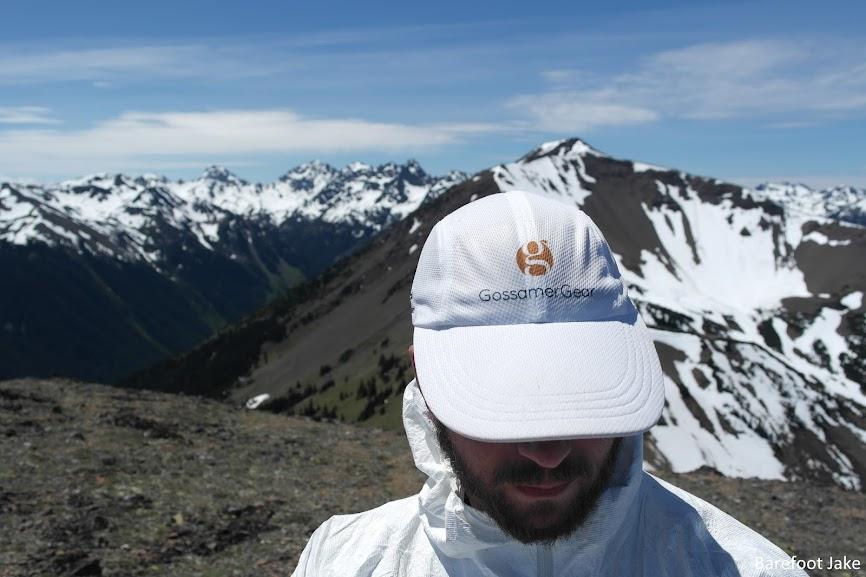 Mount Baldy Grey Wolf