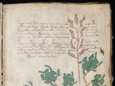 Misteri Manuskrip Nabi Berhasil Dipecahkan