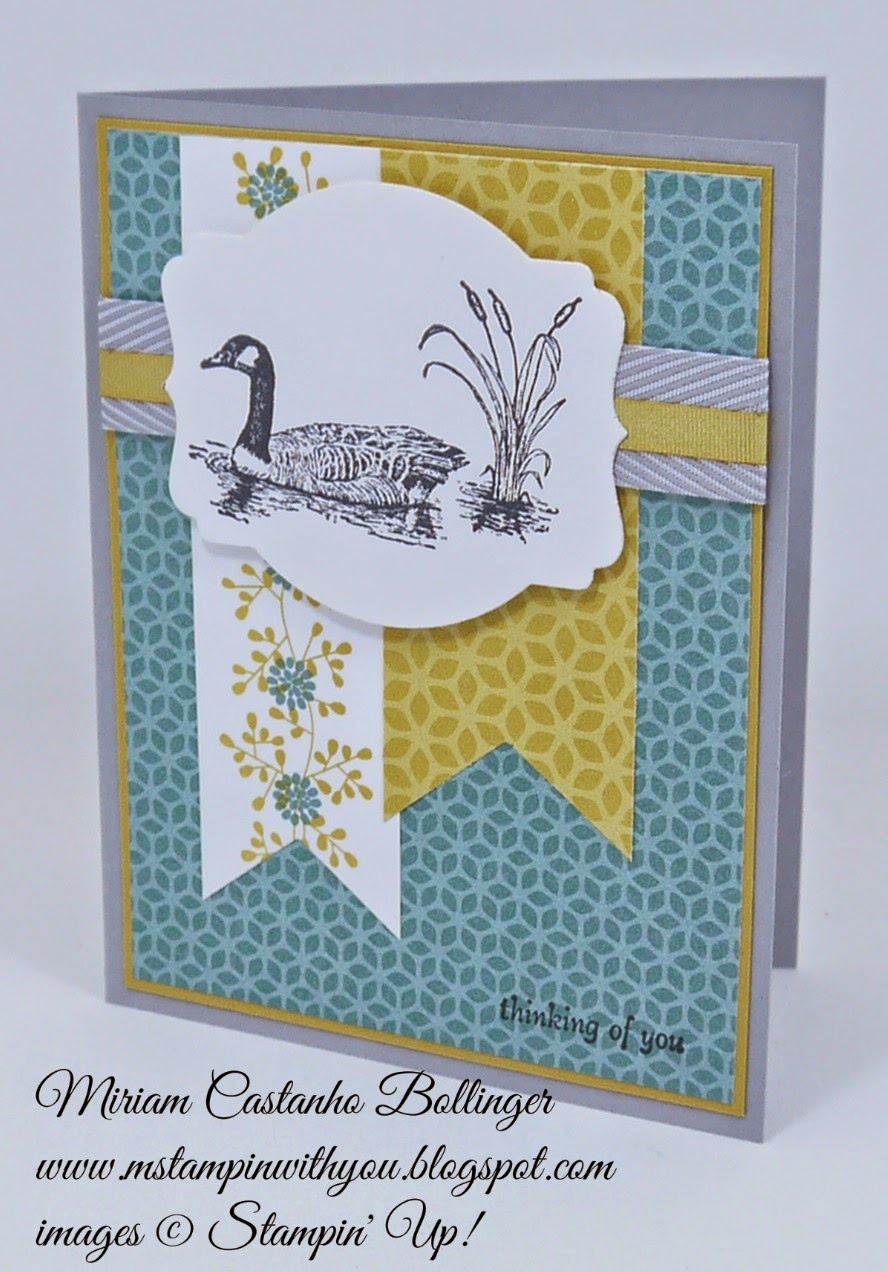 Miriam Castanho Bollinger, mstampinwithyou, stmapin up, demonstrator, mm 378, flower pot dsp, moon lake stamp set, big shot, deco labels collections, best year ever accessory pack, thinking of you, su