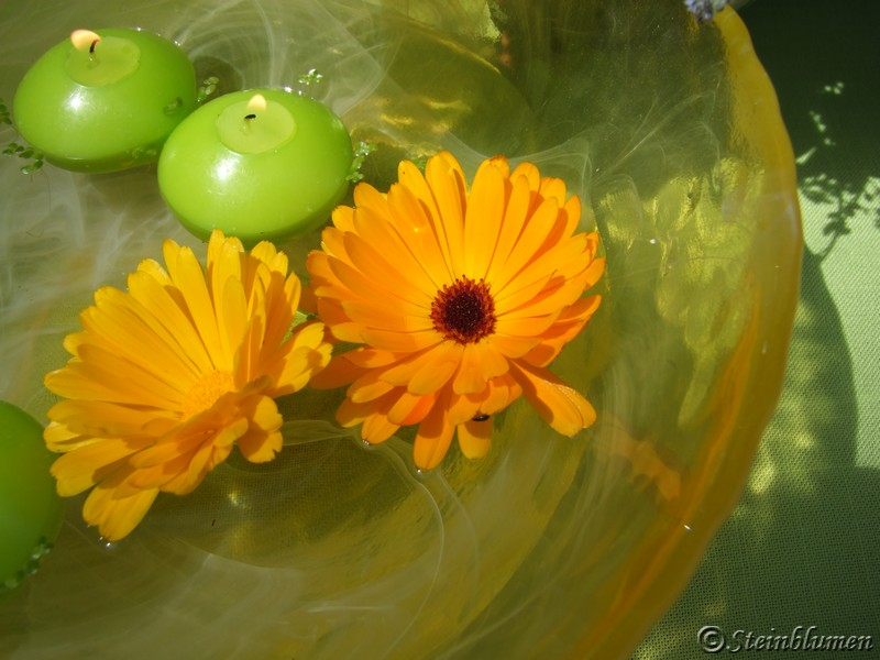 Glasschale Tischdeko