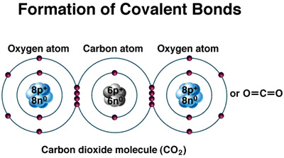 how to find which covalent molecule will form