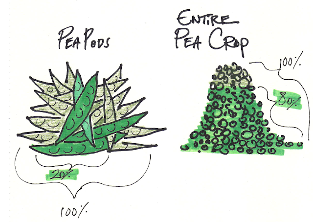 80% pea crop made by 20% pea pods