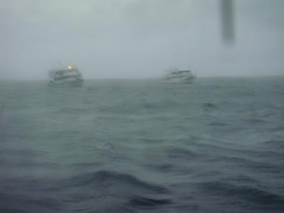 ลุย ล่า กลางพายุ(ตอนจบ)