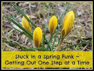 stuck in a spring funk