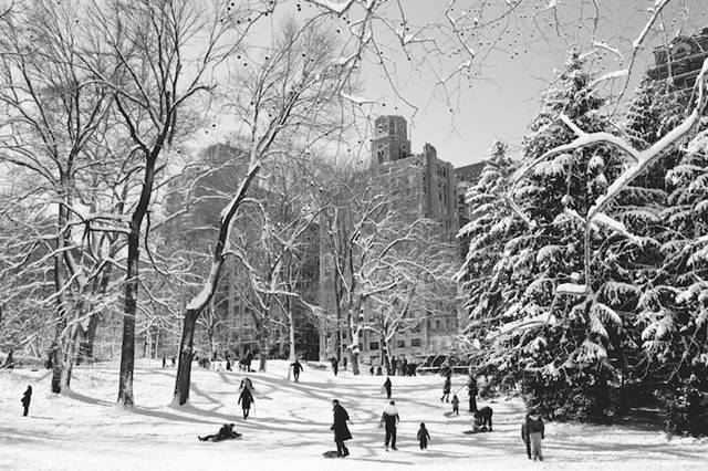 Brooklyn, New York-based photographer Dustin Cantrell just wrote to us to tell us about a beautiful new set of photos he took of New York's Central Park after the recent blizzard. The massive snowstorm, nicknamed Nemo by The Weather Channel, was caused by the collision of two weather systems, from the west and the south.