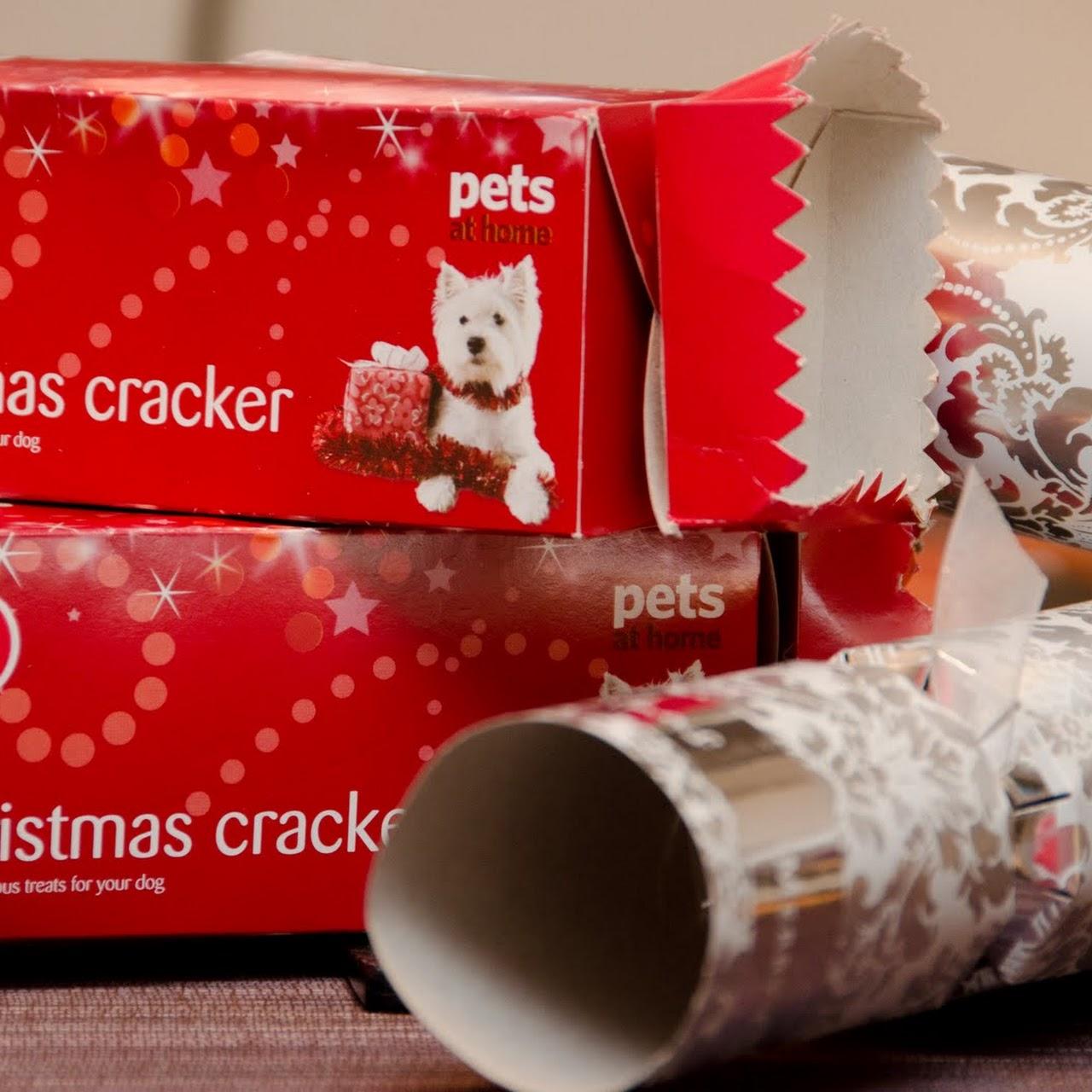 Γιορταστικά cracker