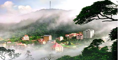 Tam Dao Mountain