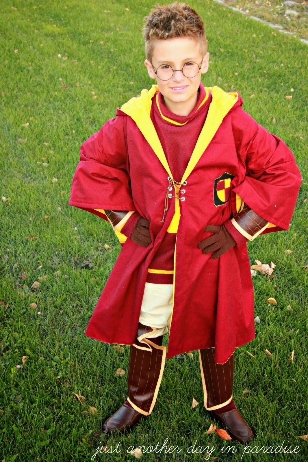potter quidditch costume Harry