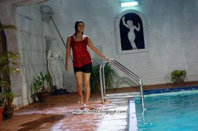 Keerthi Chawla hot wet stills