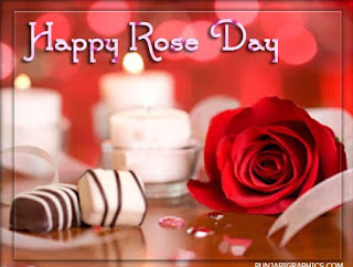 happy rose day wallappers