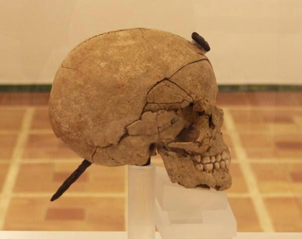 ullastret - Exponen las cabezas cortadas del yacimiento íbero de Ullastret