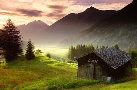 """Cette image est une photo sur laquelle on distingue au premier plan sur la droite une cabane de bois. Elle repose sur un magnifique et luxuriant lit d'herbe vert tendre et s'inscrit dans un paysage verdoyant, emaille de plusieurs sapins. au loin s'elevent des montagnes sombres que surplombe un ciel nuageux mais neanmoins lumineux. Sur la cabane, qui consititue le principal centre d'interet de ka photo, on peut lire en frontispice les desormais celebres trois lettres LMM qui sont les initiales du nom moins celebre poete Le Marginal Magnifique. Cette cabane de bois parait vetuste et simple et ne jure pas au milieu de la nature environnante bien qu'elle soit la seule trace humaine dans ce paysage naturel et preserve. Cette tres jolie photo accompagne le poeme """"Mon reve familier"""" du Marginal Magnifique qui y exprime avec lyrisme et humour son desir de mener une existence simple et authentique dans la nature, loin de la grisaille et des contraintes de la ville et meme des femme, preferant a leur contact celui des animaux plus honnetes, loyaux et fideles. Magnifique poeme encore du Marginal magnifique !"""