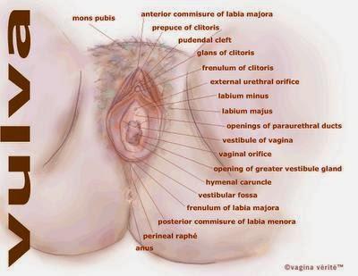http://beautifullyandhealthy.blogspot.com/2013/11/intake-vitamins-and-minerals-to-get.html