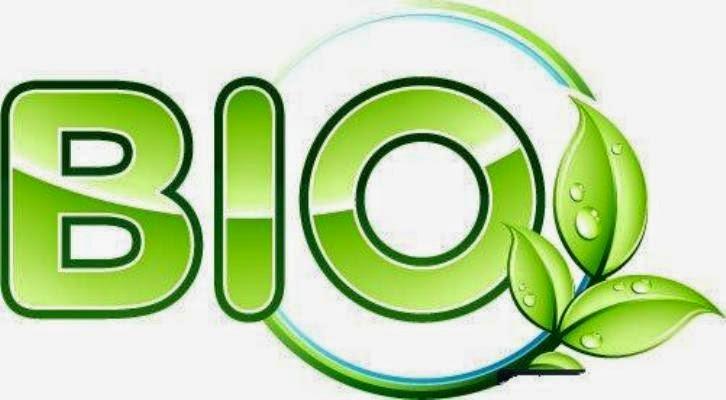 Judul Skripsi Pendidikan Biologi Dan Biologi Murni Posisi Wuenak