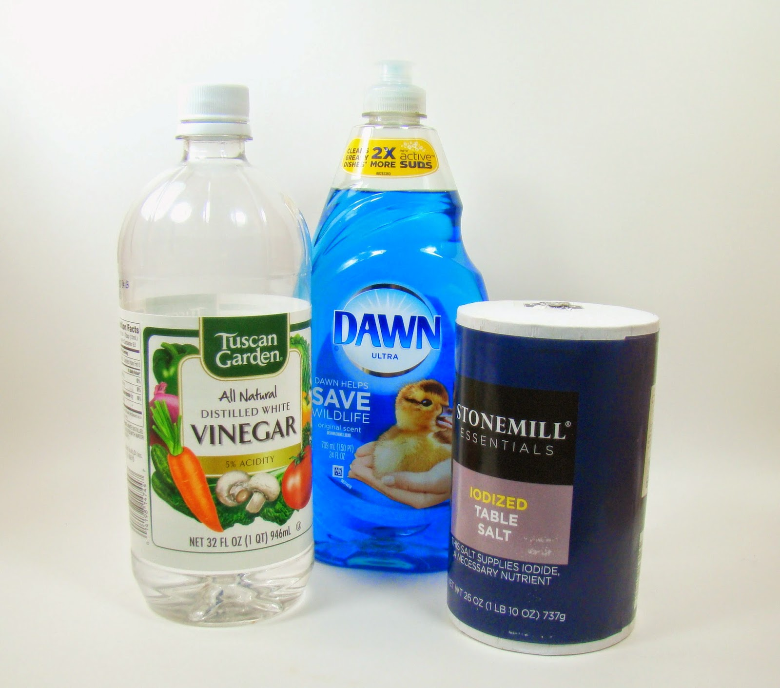 how to kill fleas with dawn and vinegar