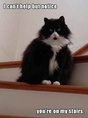 I can't help but notice you're on my stairs.