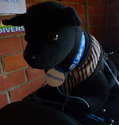 Winston the Black Dog Mascot