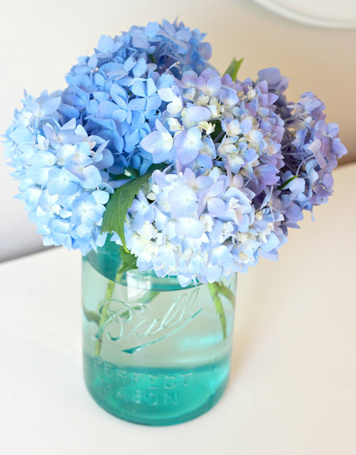 how to keep fresh cut hydrangeas from wilting