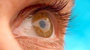 Eye Retina Can Escape