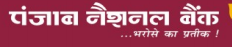 punjab national bank application form 2014