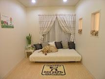 Pet Hotel Dog Rooms