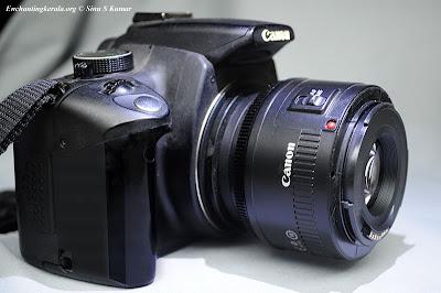 Lens Reverse