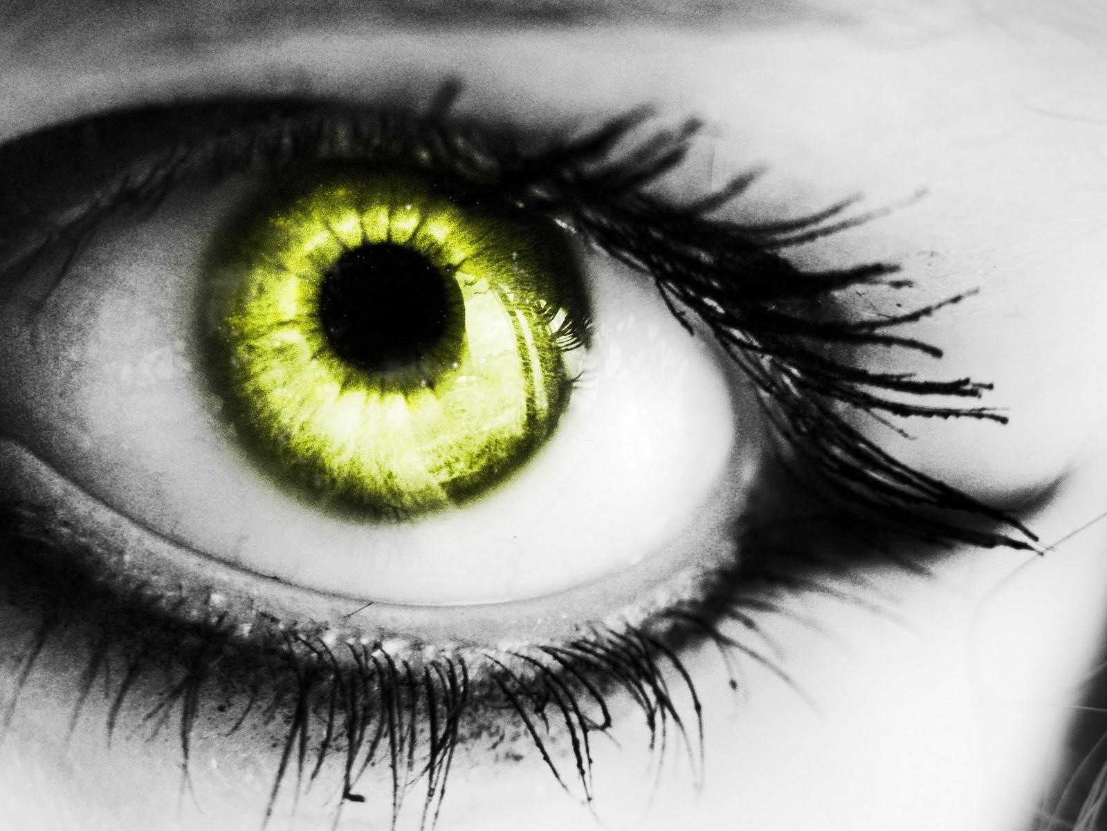 yellow eyes - photo #24