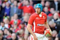 Justin Tipuric, Ospreys, Wales, Lions, Flanker