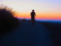 Camino Frances, 2013