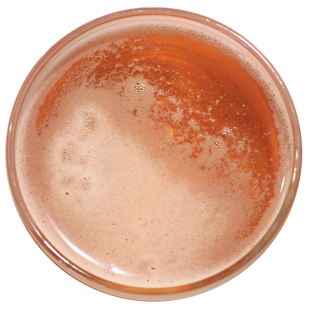 A top-down shot of a pint of beer